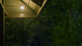 Opinião da noite na animação máxima da casa de campo video estoque