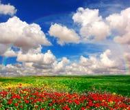 Opinião da paisagem Foto de Stock