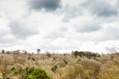 Opinião da paisagem Imagem de Stock Royalty Free