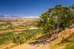 Opinião da paisagem da ilha da Creta Fotografia de Stock