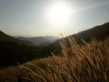 Opinião da paisagem da montanha Imagens de Stock Royalty Free