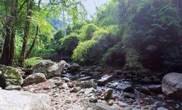 Opinião da paisagem do córrego e das rochas da água Imagens de Stock Royalty Free