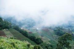 opinião da paisagem no monjam Chaingmai Tailândia Foto de Stock