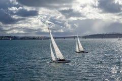 Opinião da ponte de Auckland do mar e do navio de navigação, Nova Zelândia foto de stock
