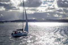 Opinião da ponte de Auckland do mar e do navio de navigação, Nova Zelândia fotografia de stock