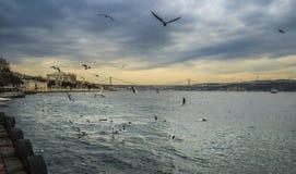 Opinião da ponte de Bosphorus Istambul Fotografia de Stock Royalty Free