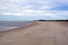 Opinião da praia com trilhas do pneu fotografia de stock royalty free