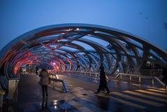 Opinião da rua da ponte do ninho do ` s do pássaro em Genebra Fotos de Stock