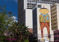 Opinião da rua de Sao Paulo Imagem de Stock Royalty Free