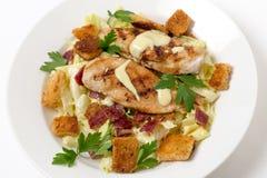Opinião de ângulo da elevação da salada de caesar da galinha Imagens de Stock Royalty Free