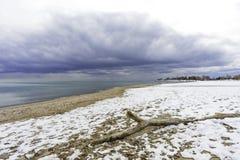 Opinião de ângulo larga da madeira lançada à costa na praia coberto de neve, aproximando-se Fotografia de Stock Royalty Free