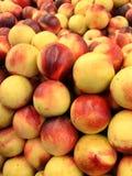 Opinião de ângulo larga de nectarina amarelas e vermelhas orgânicas frescas Fotos de Stock