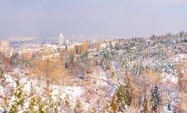 Opinião de Ancara/Turquia 30 de dezembro de 2018 - Ancara com Sheraton Hotel através do jardim botânico no tempo de inverno fotografia de stock royalty free