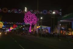 Opinião de Avenida Bolivar na noite com as árvores da vida de Nicarágua Imagens de Stock