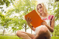 Opinião de baixo ângulo do livro de leitura de sorriso da mulher Fotos de Stock