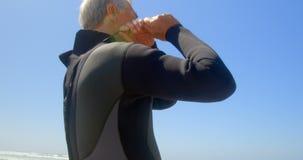 Opinião de baixo ângulo o surfista masculino caucasiano superior ativo que veste o terno molhado na praia 4k vídeos de arquivo