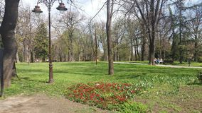 Opinião de Belgrado do parque a melhor Fotos de Stock Royalty Free