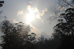 Opinião de céu aberto de Kerala foto de stock