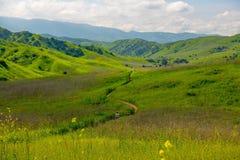 Opinião de Chino Hills no tempo de mola foto de stock