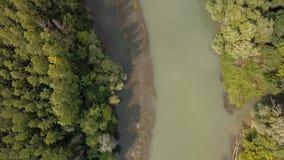 Opinião de Danúbio do rio filme