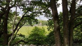 Opinião de Esk, distrito do lago Fotografia de Stock Royalty Free