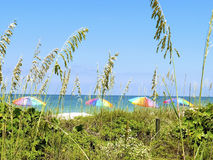 Opinião de guarda-chuva de praia Foto de Stock Royalty Free