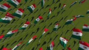 Opinião de muitas bandeiras mexicanas de cima no campo verde ilustração royalty free