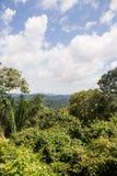 Opinião de Panama City imagens de stock royalty free