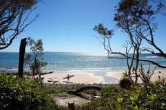 Opinião de parque nacional de Noosa fotos de stock royalty free