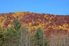 Opinião de pedra da queda do parque estadual da montanha Fotografia de Stock