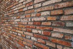 Opinião de perspectiva áspera alaranjada da textura da parede de tijolo Imagens de Stock
