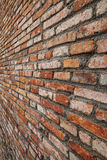 Opinião de perspectiva áspera alaranjada da textura da parede de tijolo Fotografia de Stock