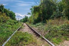 Opinião de perspectiva dos trajetos da estrada de ferro velha nas frentes verdes imagem de stock royalty free