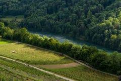 Opinião de Rhine River de Buchberg em Suíça Imagem de Stock Royalty Free