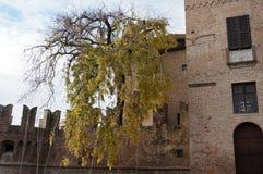 Opinião de Rocca di Fontanellato foto de stock