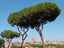 Opinião de Roma Fotos de Stock