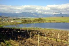 Opinião de Stellenbosch fotografia de stock