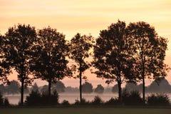 Opinião de verão indiano na Holanda Imagens de Stock Royalty Free