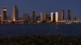 Opinião Defocused San Diego Skyline no crepúsculo do parque centenário na ilha de Coronado filme