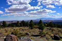 Opinião Dixie National Forest fotos de stock