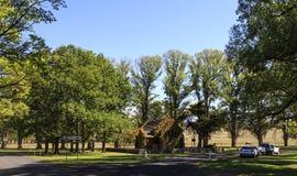 """Opinião do †de Gostwyck """"das árvores e da capela de olmo imagem de stock royalty free"""