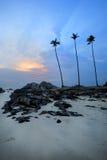 Opinião do alvorecer da praia da areia com rochas Foto de Stock Royalty Free