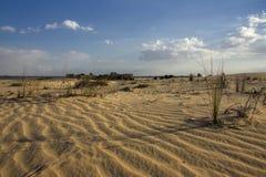 Opinião do amanhecer sobre o deserto Fotos de Stock Royalty Free