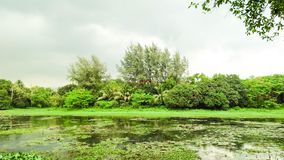 opinião do céu e do lago antes da chuva Imagens de Stock Royalty Free