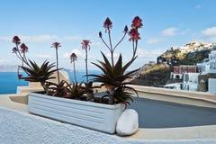 Opinião do Caldera de Thira a Imerovigli na ilha de Santorini Imagens de Stock Royalty Free