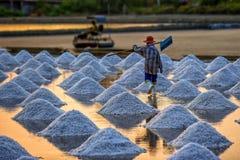 Opinião do campo de sal em tempo ajustado do sol Fotografia de Stock Royalty Free