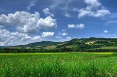 Opinião do campo de Toscânia, Volterra, Itália fotos de stock