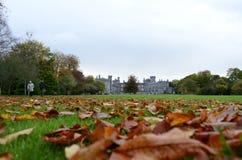 Opinião do castelo de Kilkenny do jardim com as folhas na grama, Irlanda Imagem de Stock