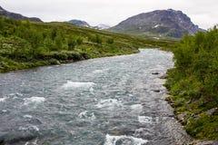 Opinião do cenário no norte sueco Rio das montanhas, fotos de stock