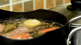 Opinião do close up da carne da carne com a cenoura e a cebola que fervem na bandeja para a sopa ou o guisado Fotografia de Stock Royalty Free